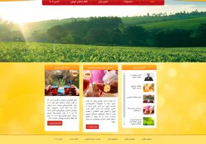 وبسایت لیپتون - صفحه اصلی
