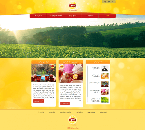 Lipton Website